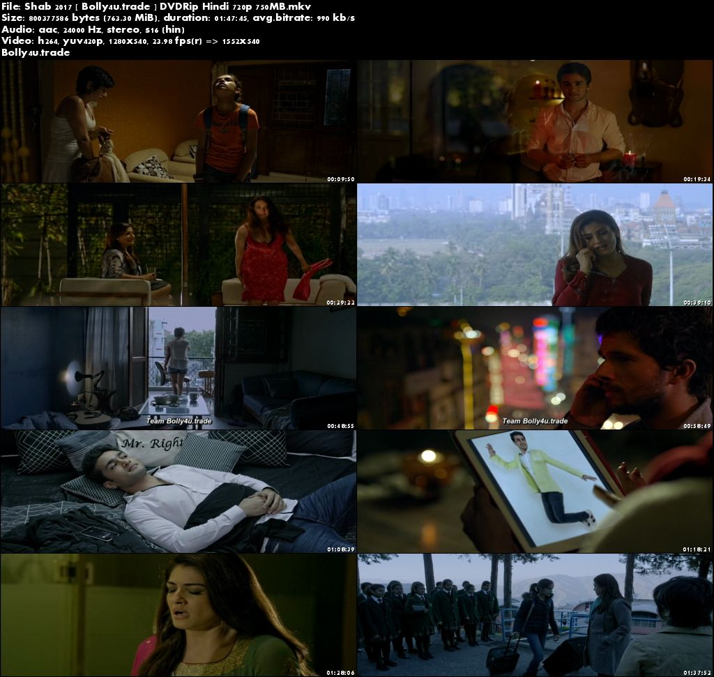 Shab 2017 DVDRip 300Mb Full Hindi Movie Download 480p