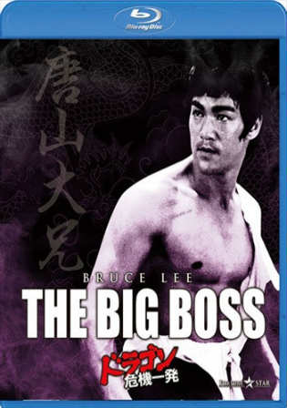 The Big Boss 1971 BluRay 300MB Hindi Dual Audio 480p Watch Online Full Movie Download bolly4u