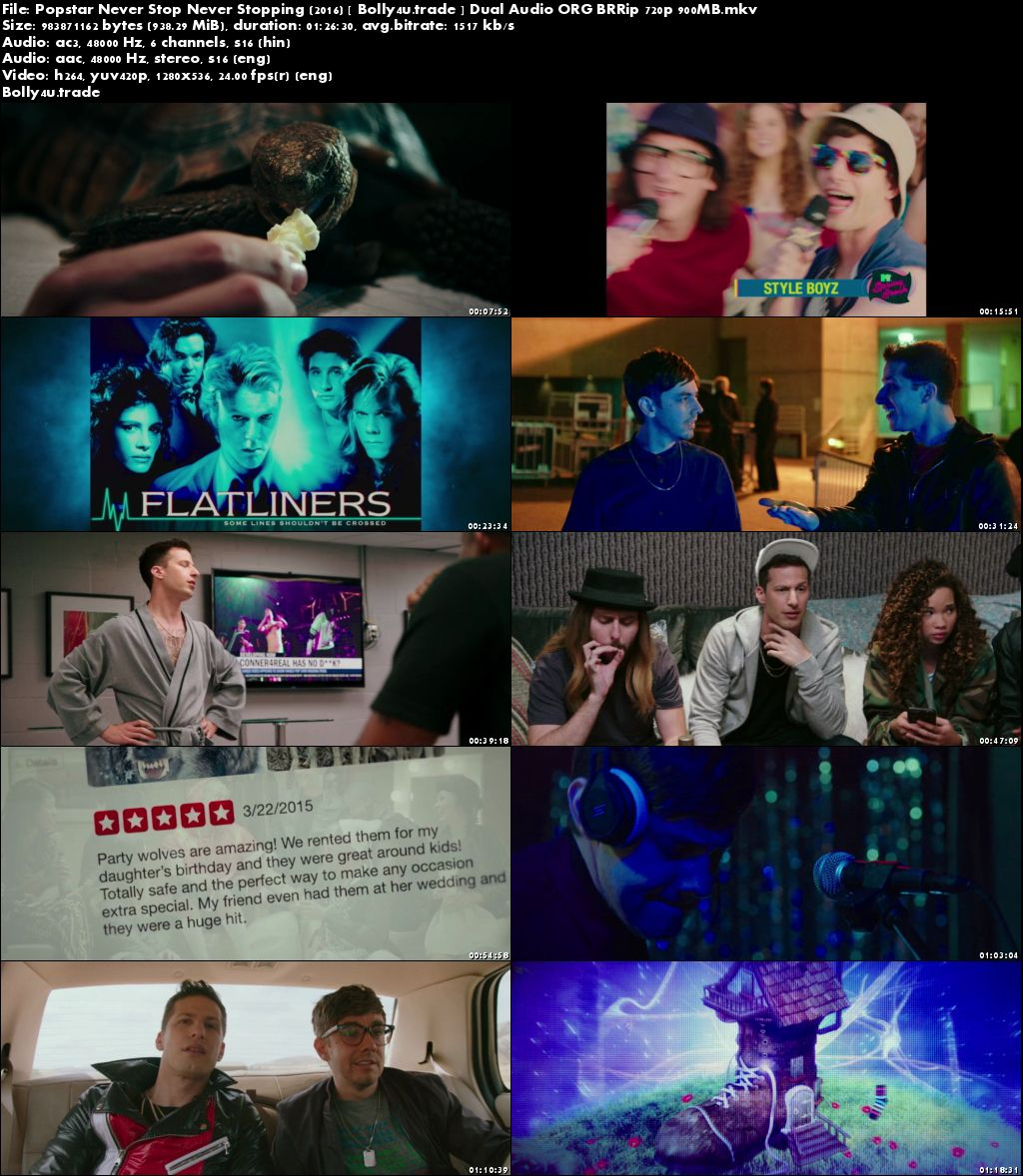 Popstar Never Stop Never Stopping 2016 BRRip 280Mb Hindi Dual Audio 480p Download