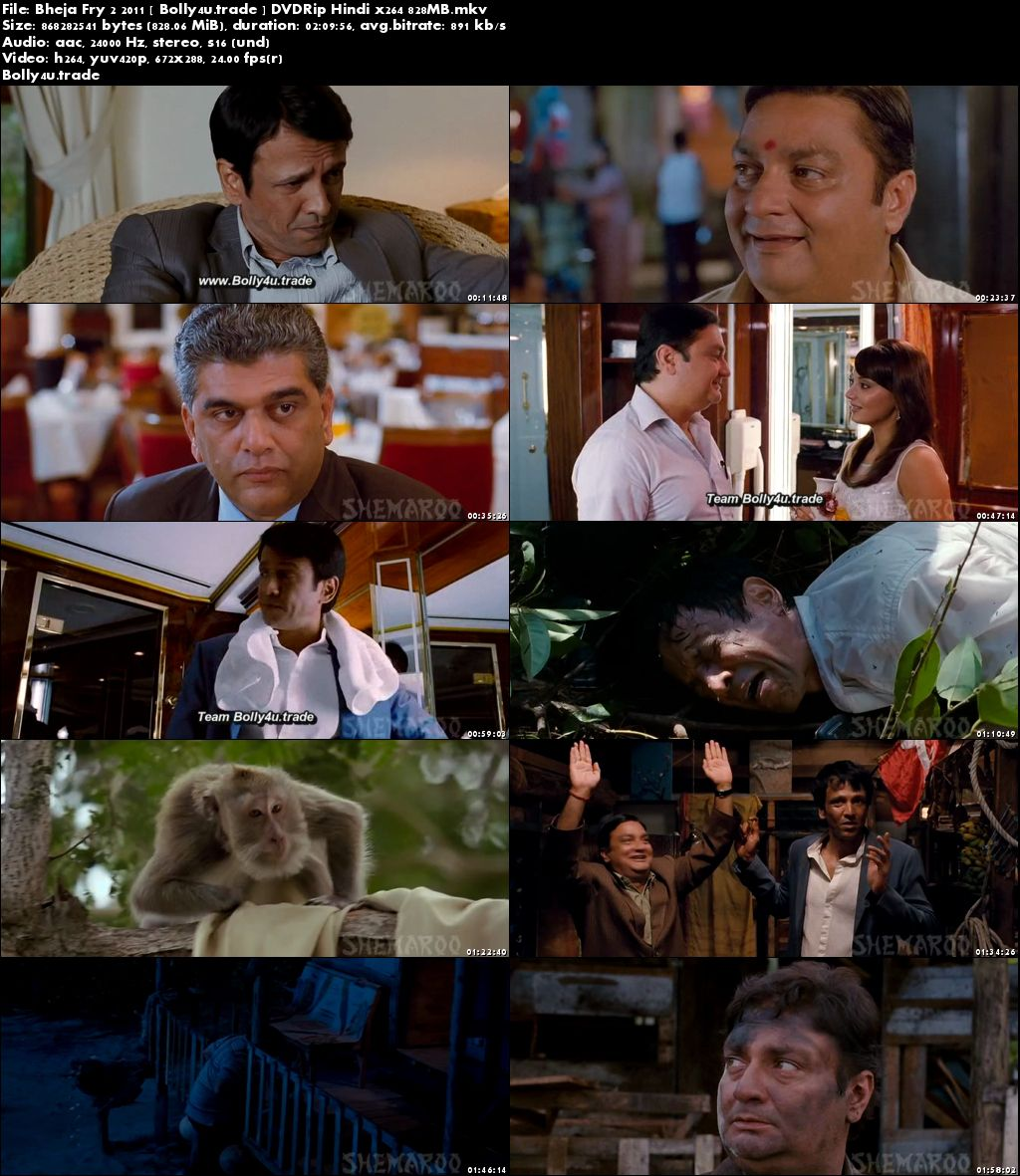 Bheja Fry 2 2011 DVDRip 350MB Full Hindi Movie Download 480p