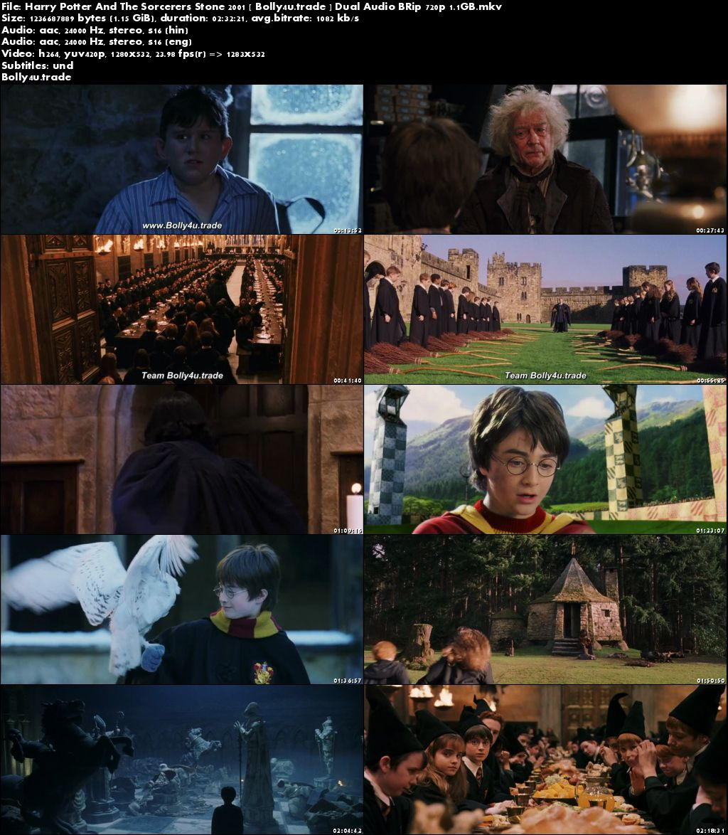 Harry Potter And The Sorcerers Stone 2001 BRRip Hindi Dubbed Dual Audio 720p Download