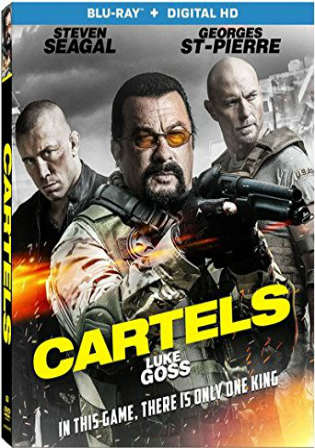 Cartels 2017 BluRay 300MB Hindi Dual Audio 480p Watch Online Full Movie Download bolly4u