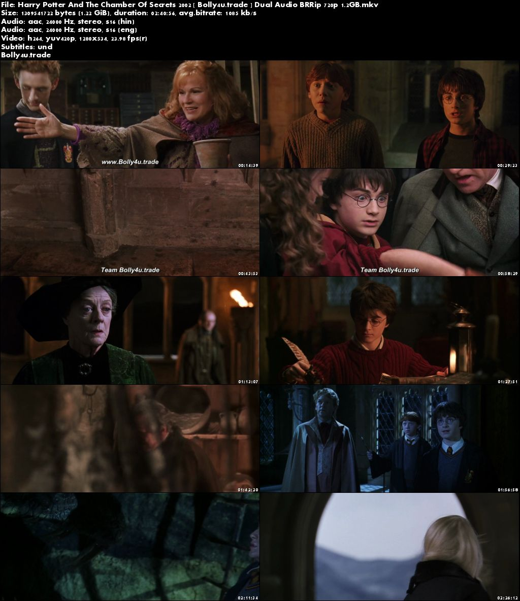 Harry Potter And The Chamber Of Secrets 2002 BRRip 500MB Hindi Dual Audio 480p Download