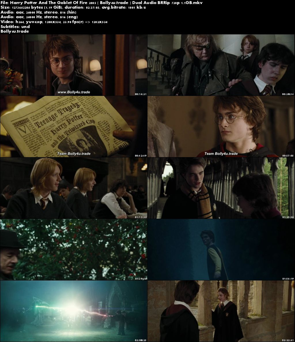Harry Potter And The Goblet Of Fire 2005 BRRip 500Mb Hindi Dual Audio 480p Download