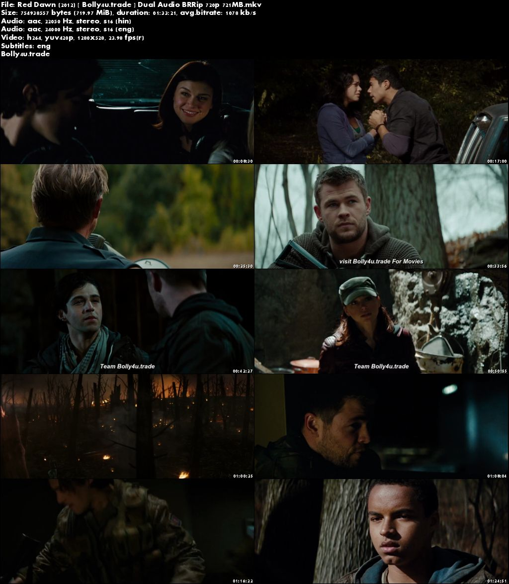 Red Dawn 2012 BluRay 700MB Hindi Dubbed Dual Audio 720p Download