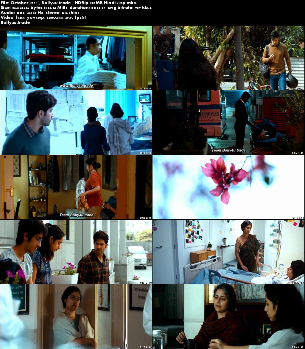 October 2018►Two Thousand Eighteen►Two Thousand Eighteen HDRip 800Mb Full Hindi Movie Download (720p►1280 x 720 pixels)
