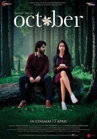 October 2018 HDRip 350Mb Full Hindi Movie Download 480p