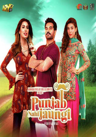 Punjab Nahi Jaungi 2017 HDTV 700MB Pakistani Urdu x264 Watch Online Full Movie Download bolly4u