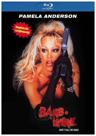 Barb Wire 1996 BluRay 850Mb Hindi Dual Audio 720p Watch online Full Movie Download bolly4u
