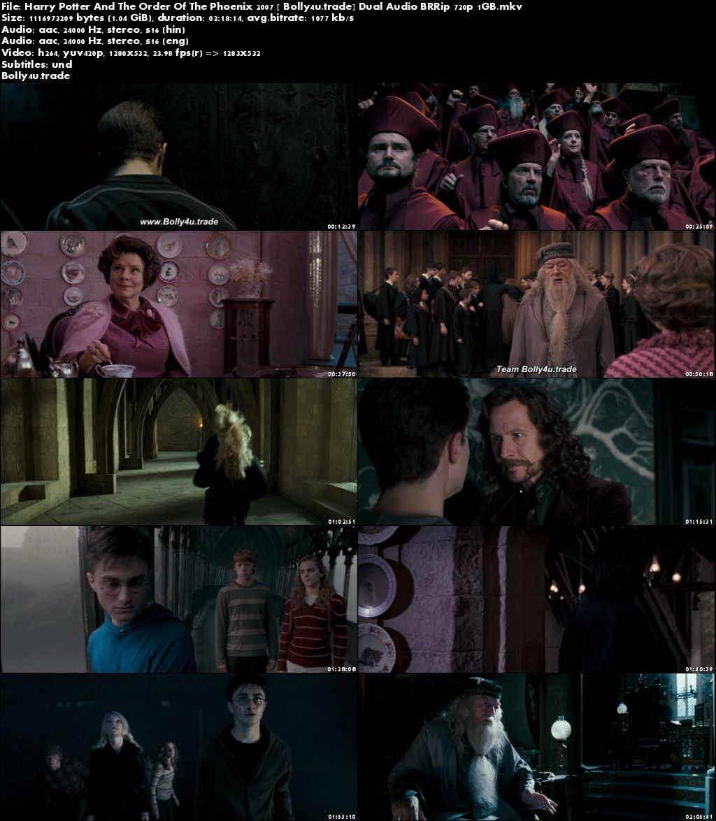 Harry Potter And The Order Of The Phoenix 2007 BRRip 400MB Hindi Dual Audio 480p Download