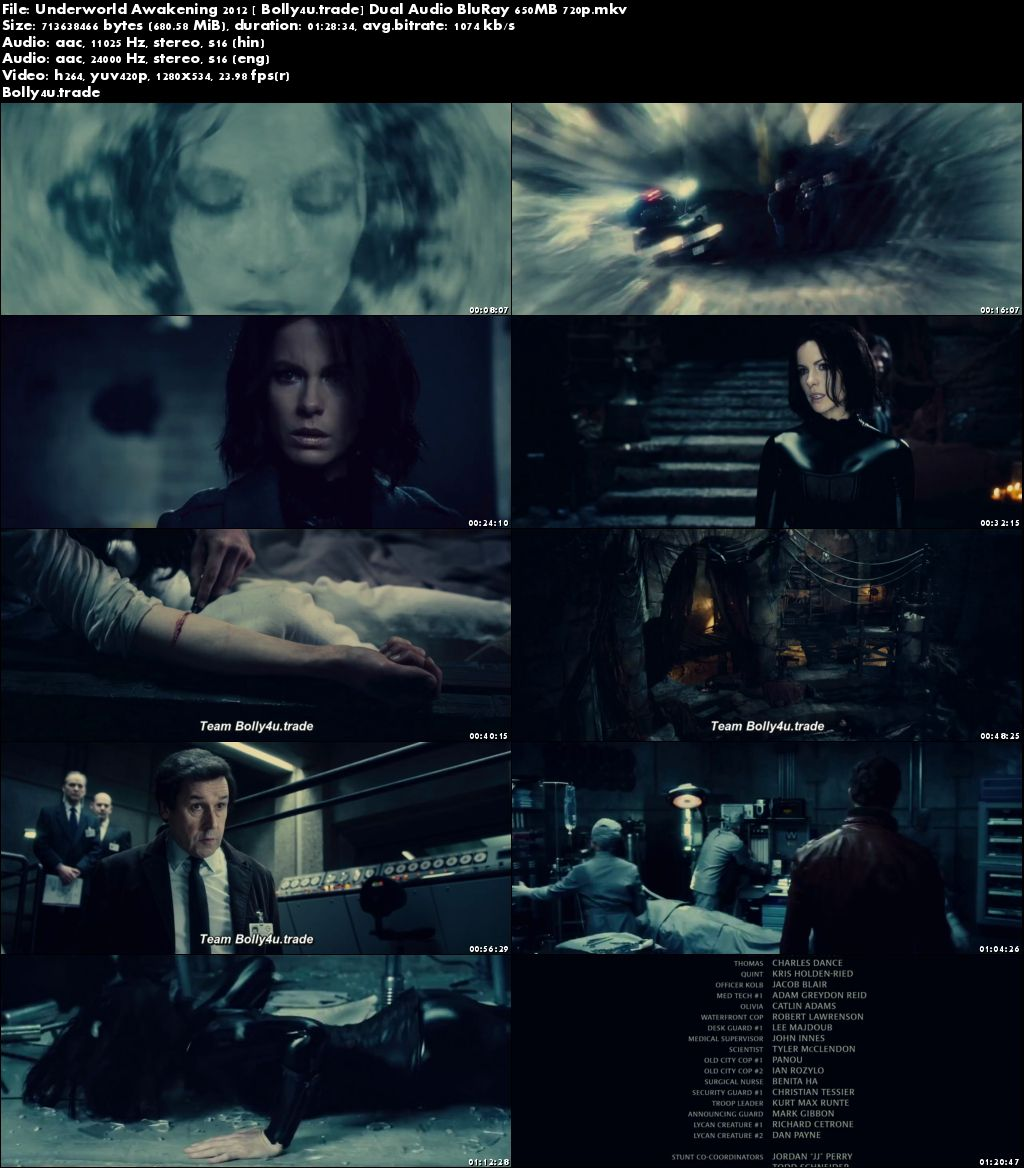 Underworld Awakening 2012 BRRip 650Mb Hindi Dual Audio 720p Download