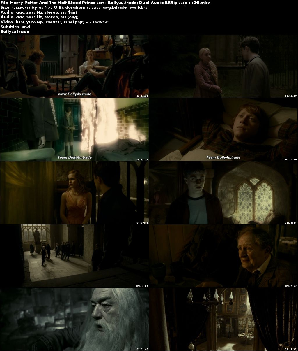 Harry Potter And The Half Blood Prince 2009 BRRip 450MB Hindi Dual Audio 480p Download