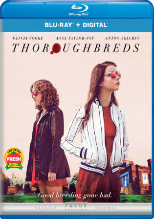Thoroughbreds 2017 BluRay 850Mb English 720p ESub Watch Online Full Movie Download bolly4u