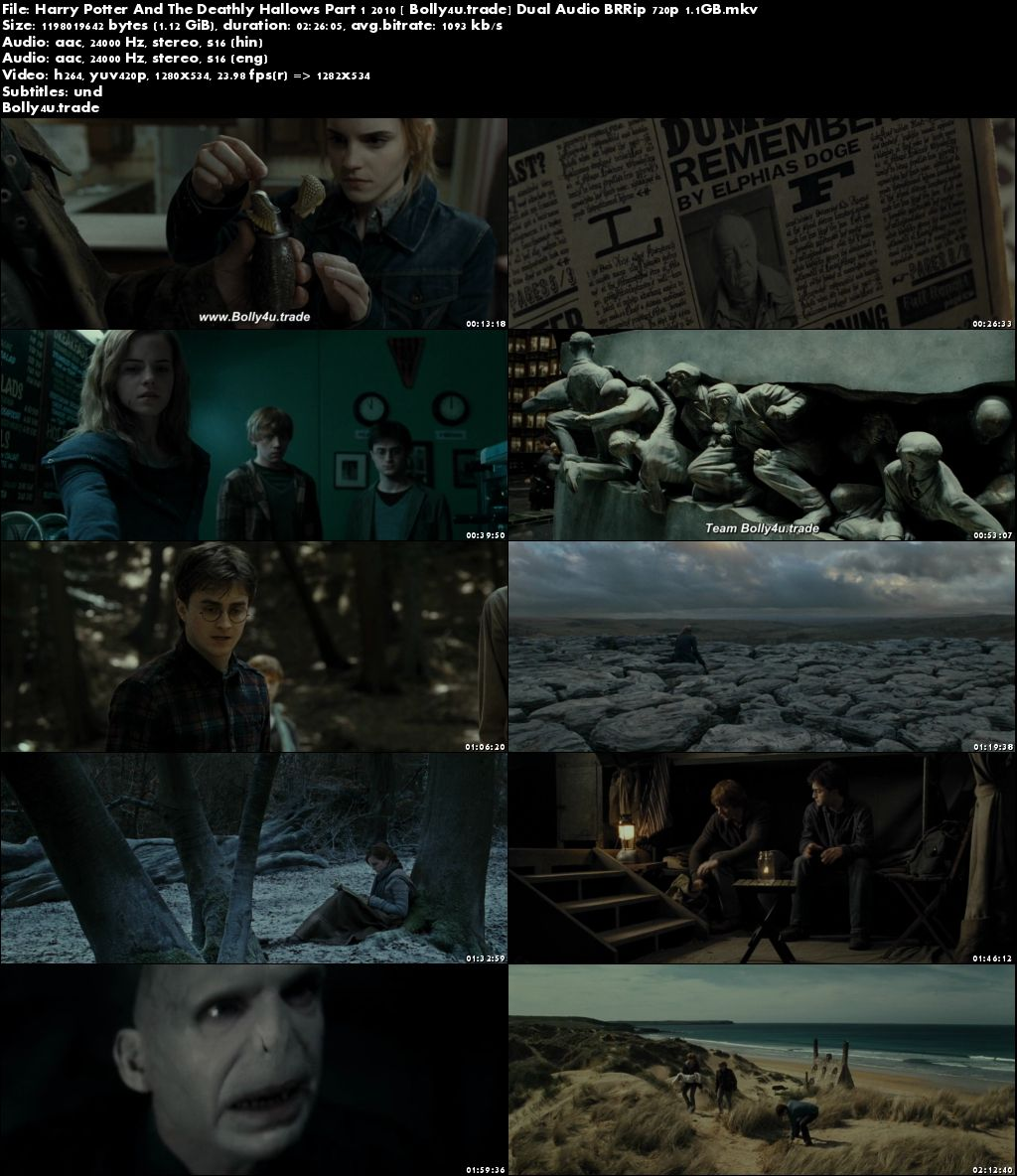 Harry Potter And The Deathly Hallows Part 1 2010 BRRip 450MB Hindi Dual Audio 480p Download