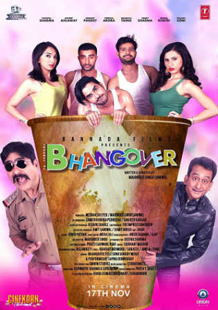 Journey Of Bhangover 2017 DTHRip 350MB Full Hindi Movie Download 480p Watch Online Free bolly4u