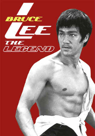 Bruce Lee The Legend 1984 HDTV 1Gb Hindi Dubbed Dual Audio 720p Watch Online Full Movie Download bolly4u