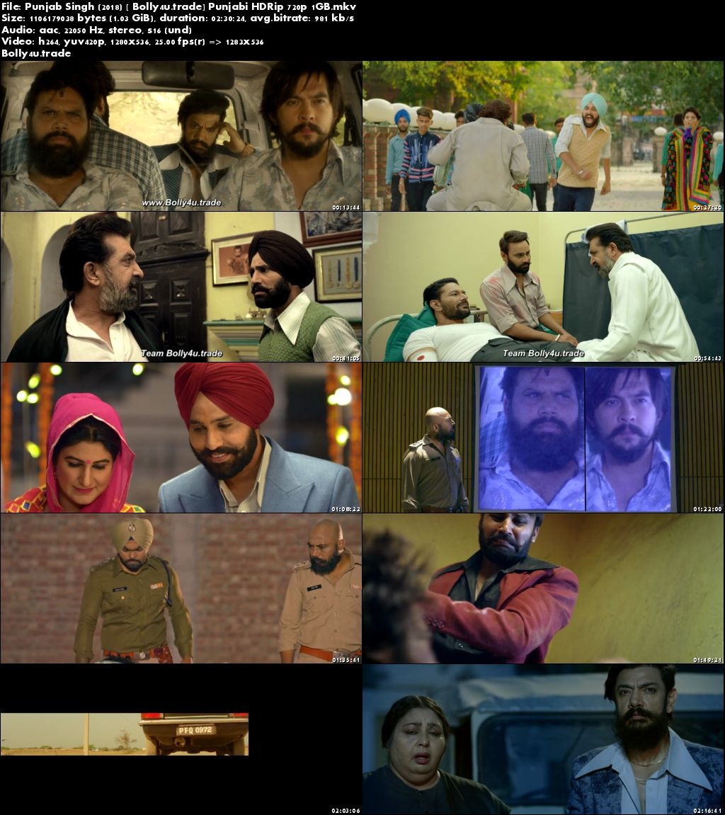 Punjab Singh 2018 HDRip 480p Full Punjabi Movie Download 400MB