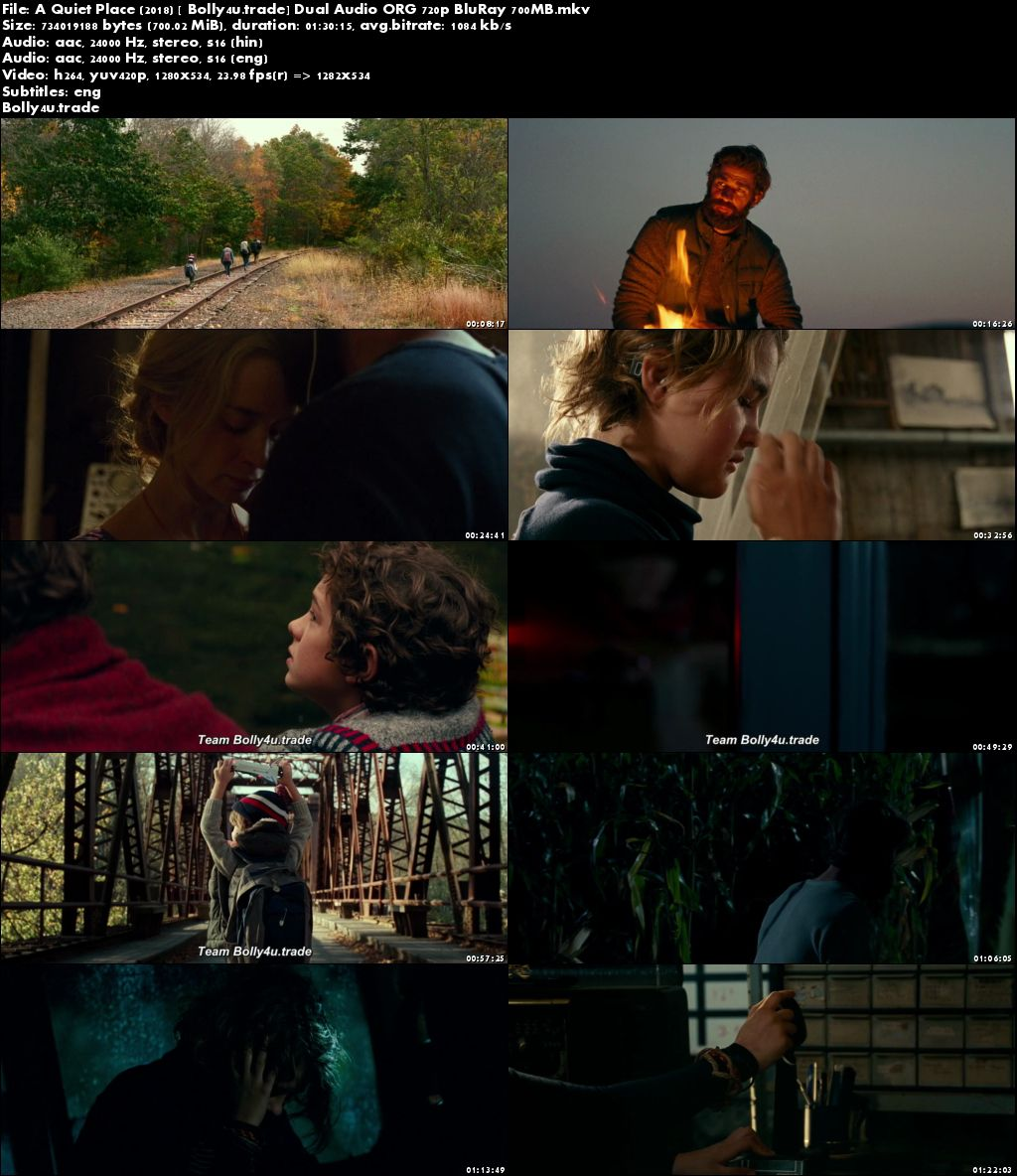 A Quiet Place 2018 BluRay 300MB Hindi Dubbed Dual Audio ORG 480p Download