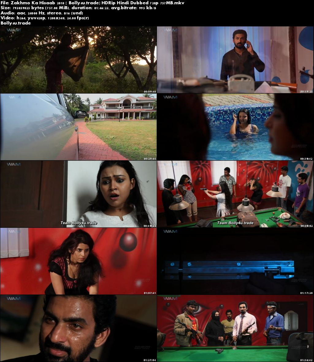 Zakhmo Ka Hisaab 2018 HDRip 300MB Hindi Dubbed 480p Download