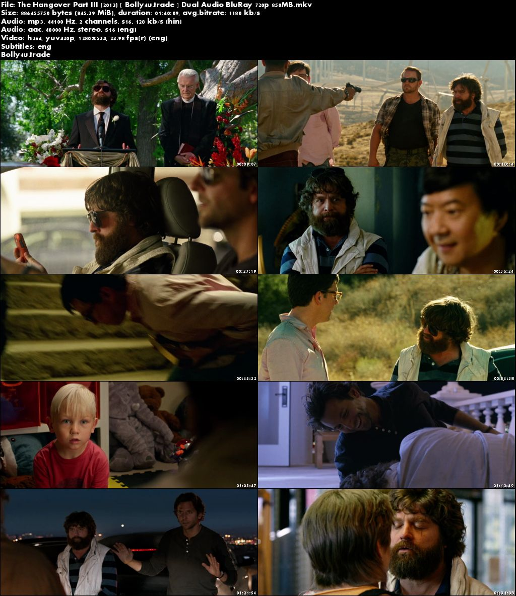 The Hangover Part III 2013 BluRay 300MB Hindi Dual Audio 480p ESub Download