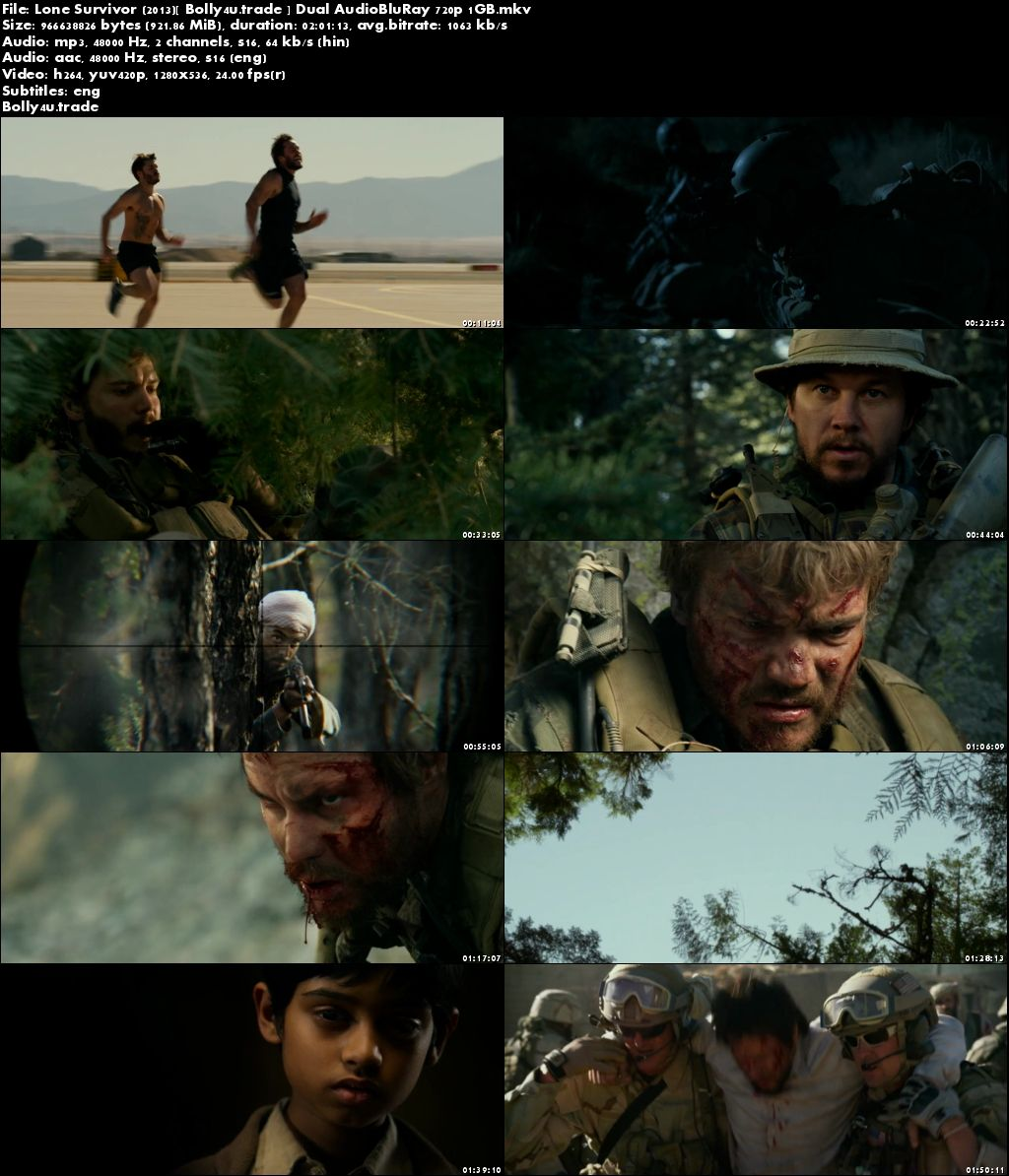 Lone Survivor 2013 BluRay 900MB Hindi Dubbed Dual Audio ORG 720p Download