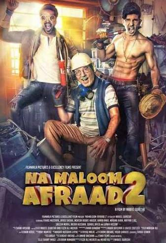 Na Maloom Afraad 2 2017 Movie HDRip Download 900MB 720p