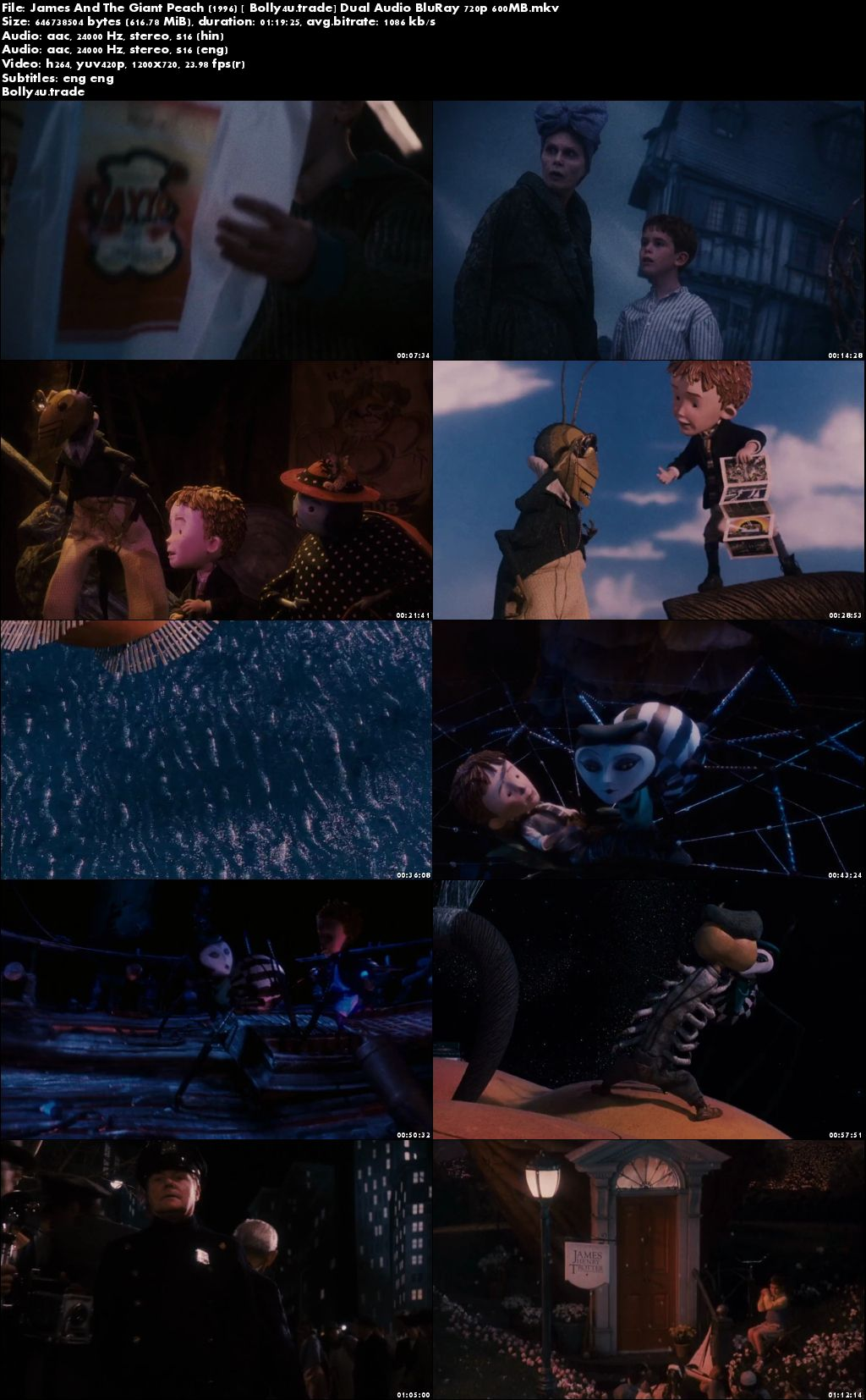 James And The Giant Peach 1996 BRRip 250MB Hindi Dual Audio 480p Download