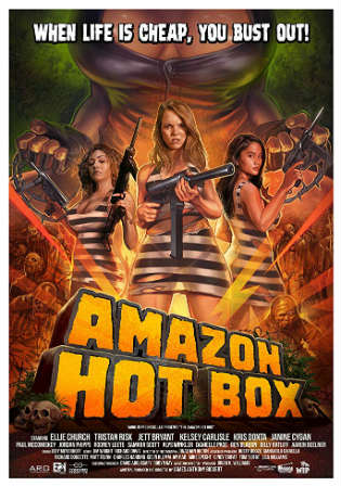 [18+] Amazon Hot Box 2018 HDRip UNRATED English x264