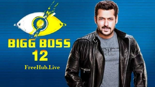 Bigg Boss S12E47 1st November 2018 220MB TVRip 480p
