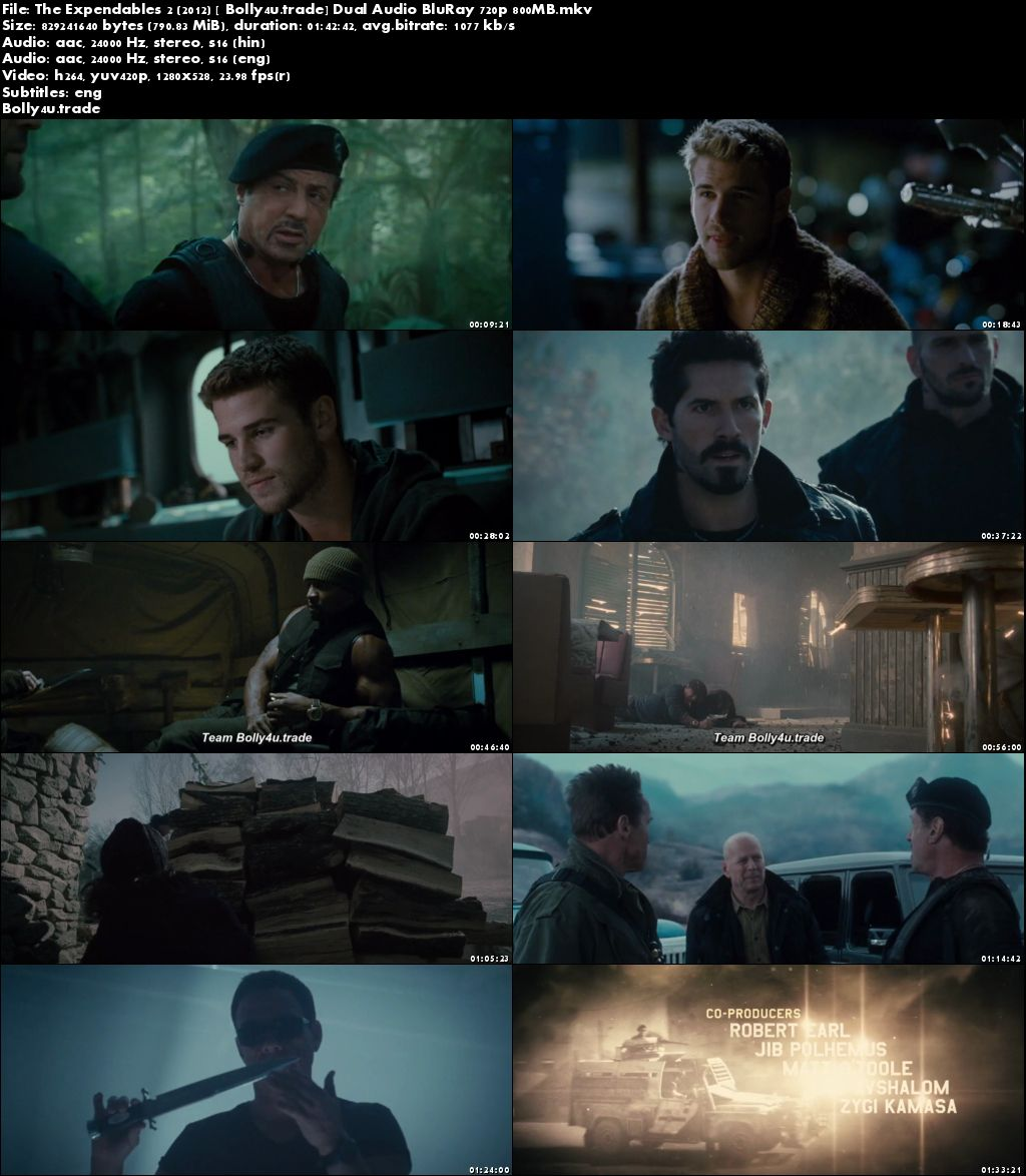 The Expendables 2 2012 BluRay 350Mb Hindi Dual Audio 480p ESub Download