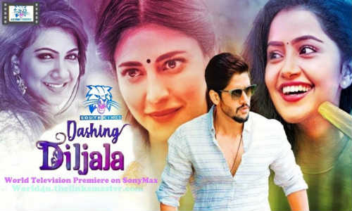 Dashing Diljale 2018 HDTV 300Mb Full Hindi Dubbed Movie Download 480p Watch Online Free bolly4u