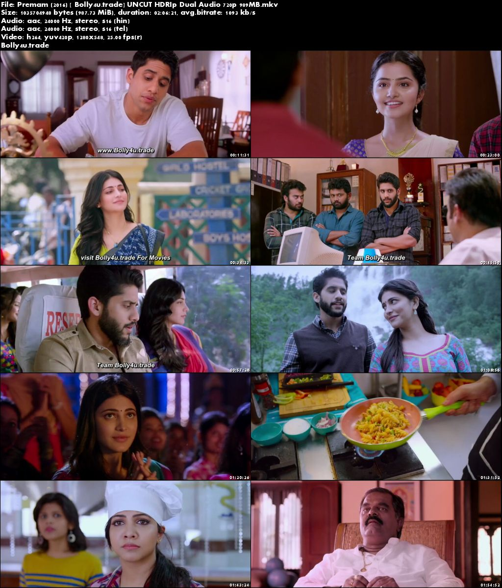 Premam 2016 HDRip 950MB UNCUT Hindi Dual Audio 720p Download