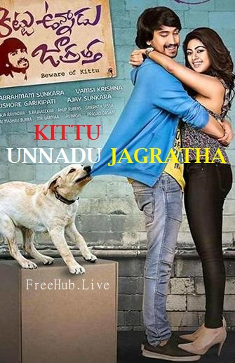 Kittu Unnadu Jagratha 2017 Movie Hindi UNCUT Dual Audio Telugu 480p