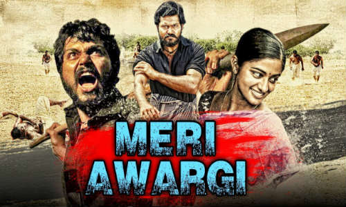 Meri Awargi 2018 HDRip 350MB Full Hindi Dubbed Movie Download 480p