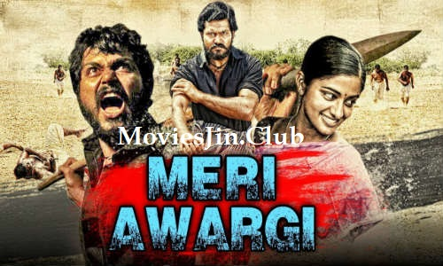 Meri Awargi 2018 300MB Download Hindi Dubbed HDRip 480p