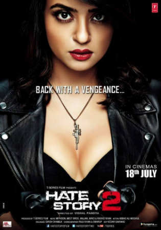 Hate Story 2 2014 HDRip 300Mb Full Hindi Movie Download 480p ESub Watch Online Free Bolly4u