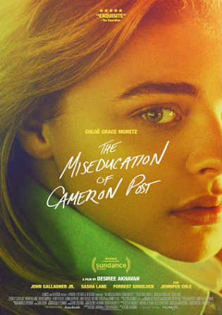 The Miseducation of Cameron Post 2018 WEB-DL 300MB English 480p ESub Watch Online Full Movie Download bolly4u