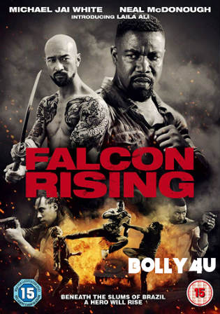 Falcon Rising 2014 BRRip 300Mb Hindi Dual Audio 480p Watch Online Full Movie Download Bolly4u