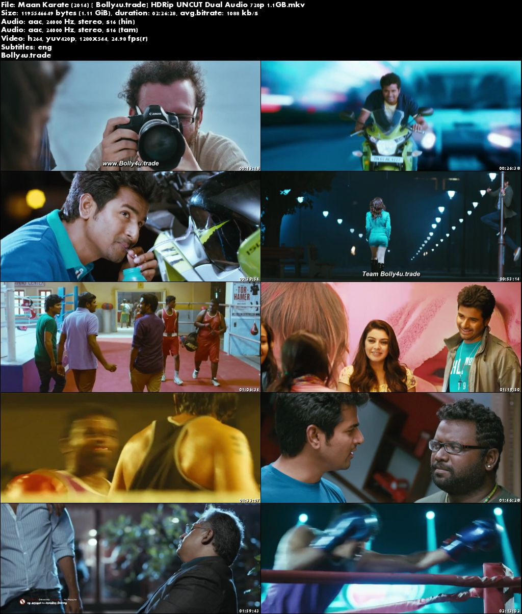 Maan Karate 2014 HDRip 450MB UNCUT Hindi Dual Audio 480p Download