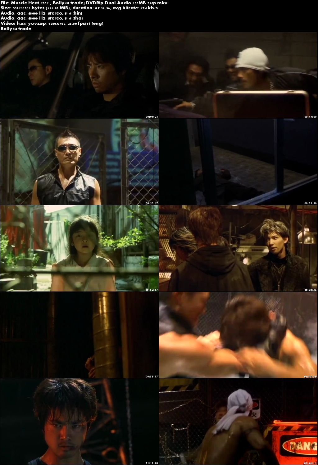 Muscle Heat 2002 DVDRip 300Mb Hindi Dual Audio 480p Download