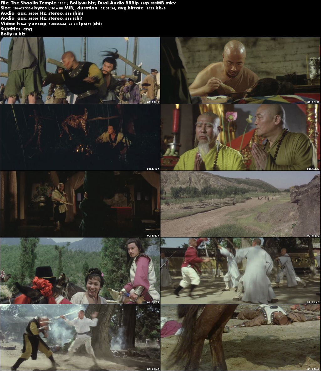 The Shaolin Temple 1982 BRRip 300Mb Hindi Dual Audio 480p Download