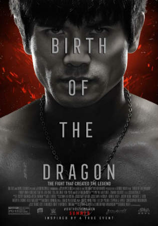 Birth of The Dragon 2016 BluRay 300MB Hindi Dual Audio 480p Watch Online Full Movie Download bolly4u