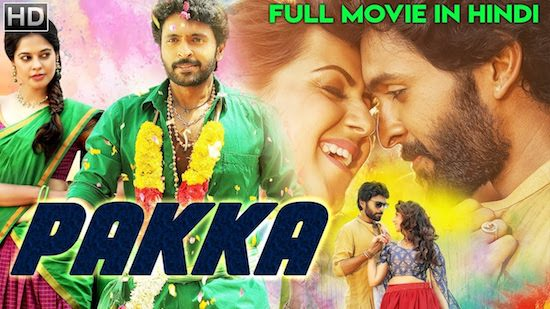Pakka 2018 HDRip 400MB Full Hindi Dubbed Movie Download 480p