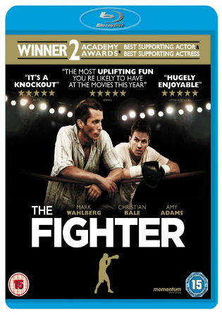 The Fighter 2010 BluRay 700Mb Hindi Dual Audio 720p