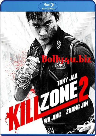 Kill Zone 2 2015 BluRay 400MB UNCUT Hindi Dual Audio 480p Watch Online Full Movie Download bolly4u