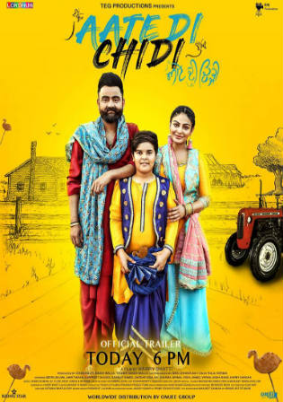 Aate Di Chidi 2018 SDTV 500Mb Full Punjabi Movie Download 480p