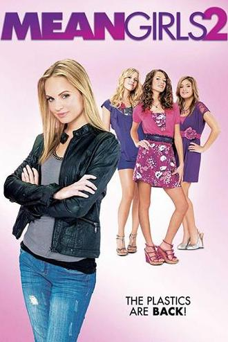 Mean Girls 2 2011 300MB Movie Dual Audio Hindi 480p Esubs