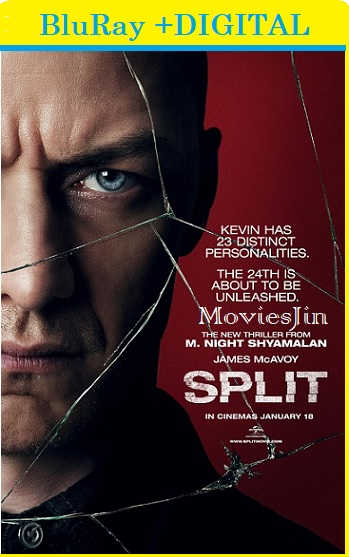 Split 2016 300MB Movie Hindi BluRa Dual Audio Esubs 480p