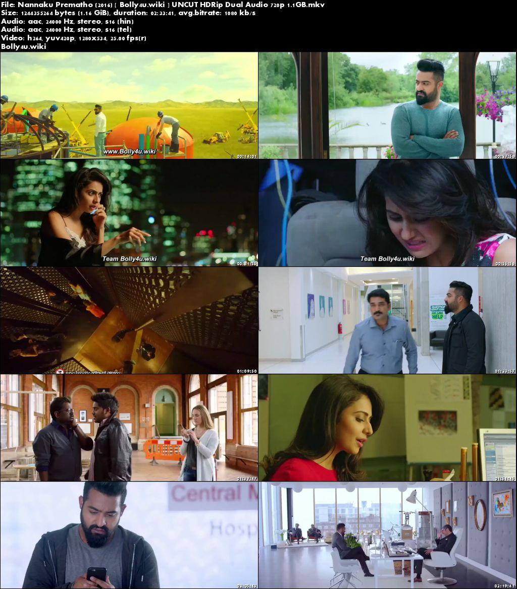 Nannaku Prematho 2016 HDRip 450Mb UNCUT Hindi Dual Audio 480p Download