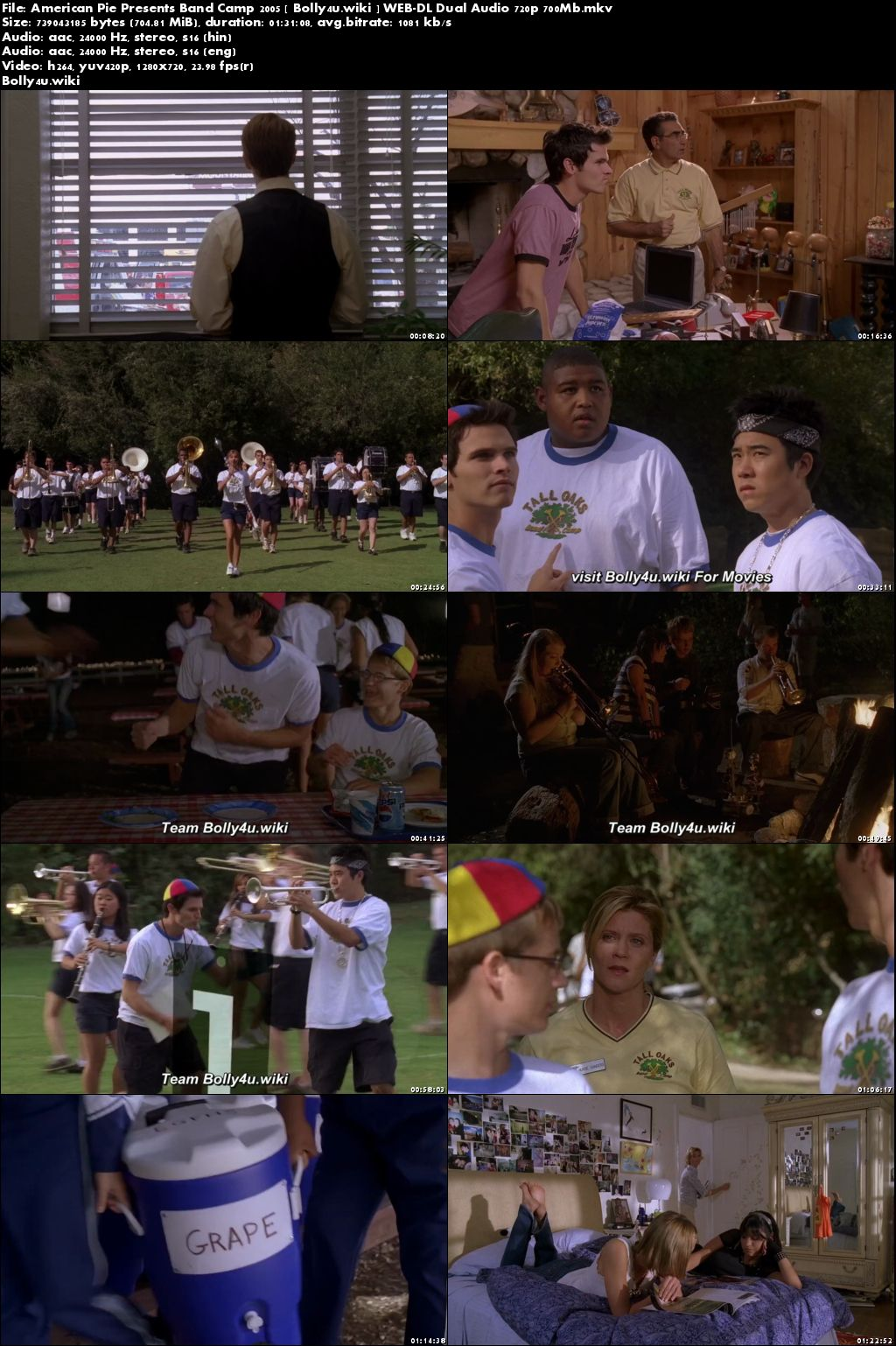 American Pie Presents Band Camp 2005 WEB-DL 300Mb Hindi Dual Audio 480p Download